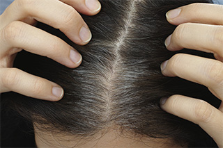 Comparsa capelli grigi