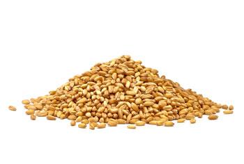 gluten-and-grains